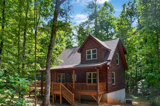 Single Family for sale in 204 Mountain Vista Drive, Nebo, NC, 28761