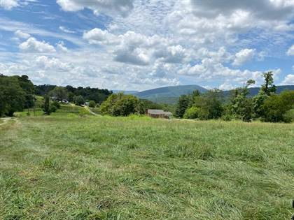 Lots And Land for sale in 7005 Thirlane RD, Roanoke, VA, 24019