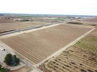 Farm And Agriculture for sale in 0-APN 38-100-42 Dinuba Avenue, Fresno, CA, 93725
