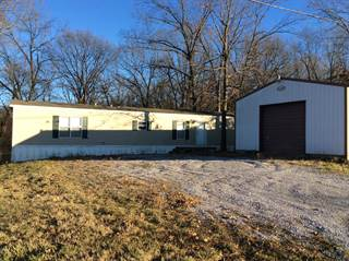 Single Family for sale in 12752 Stanford Lane, Opdyke, IL, 62872
