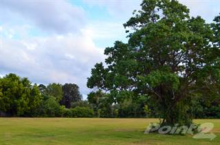 Residential Property for sale in Lot 3 Laurel St, La Marque, TX, 77568