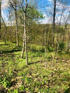 Lots And Land for sale in SILVER CREEK Road, Union, PA, 17864