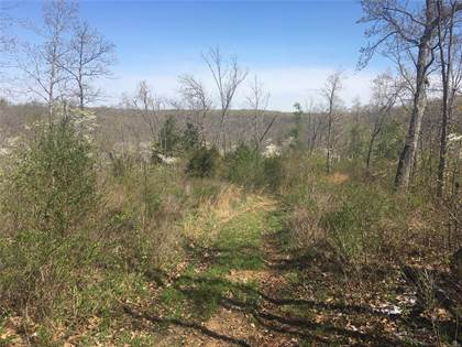 Farm And Agriculture for sale in 4 Bucks Crossing, Richwoods, MO, 63071