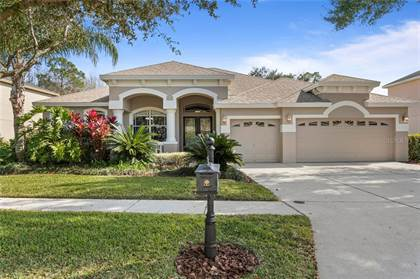 Residential Property for sale in 6614 THORNTON PALMS DRIVE, Tampa, FL, 33647
