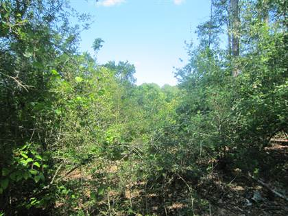 Lots And Land for sale in 19+, - Ac Bullock Rd., Seminary, MS, 39479