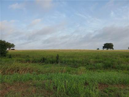 Farm And Agriculture for sale in 1147 N Farm Road 486, Thorndale, TX, 76577