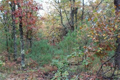 Lots And Land for sale in 15499 S Cranberry Lake Rd, Wascott, WI, 54838