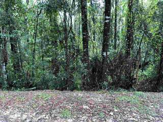 Land for sale in 229 Rolling Hill Drive, Daphne, AL, 36526