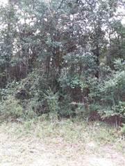 Land for sale in Lot 10 N HWY 87, Milton, FL, 32570