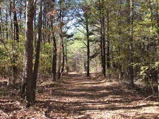 Land for sale in Old Pinson, Jackson, TN, 38301