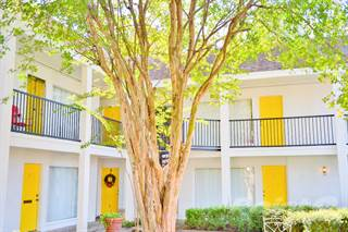 Apartment for rent in 1507 California, Houston, TX, 77006