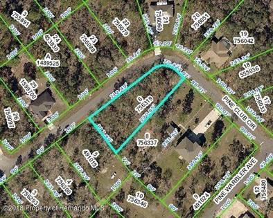 Lots And Land en venta en 12114 Pine Club Circle, Annutteliga Hammock, FL, 34614