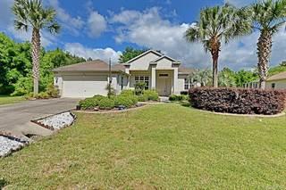 Single Family for sale in 3438 N Canterbury Lake Drive 54, Hernando, FL, 34442