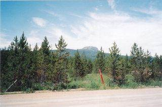 Land for sale in 4492 E JM Loop Road, Island Park, ID, 83429