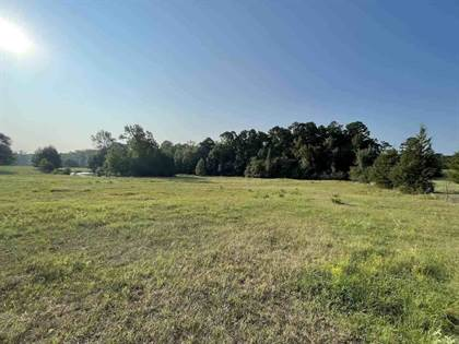 Lots And Land for sale in TBD Hwy 77, Atlanta, TX, 75551