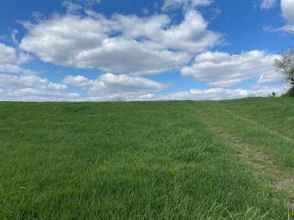 Lots And Land for sale in 600 Hwy 17 N, Butler, KY, 41006