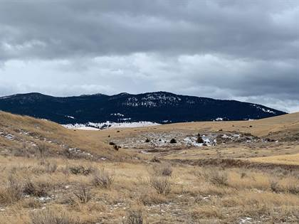 Farm And Agriculture for sale in Nhn Highway 12 East, Winston, MT, 59647