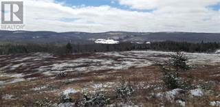 Farm And Agriculture for sale in Cross Road, Colchester Rural, Nova Scotia