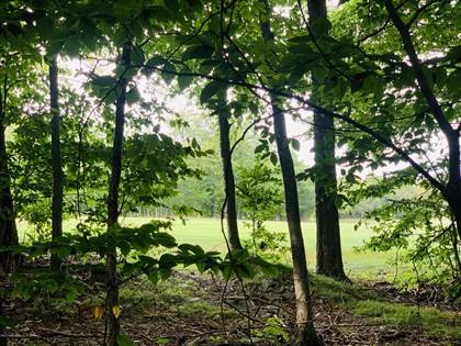 Lots And Land for sale in 2501 KILMER RD, Tobyhanna, PA, 18466