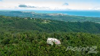 Farm And Agriculture for sale in 9988 Km 1.8, Río Chiquito, Luquillo, PR, 00773