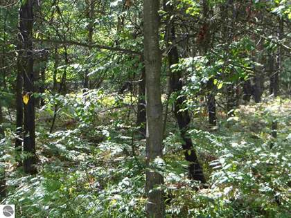 Lots And Land for sale in 0 Ptarmigan Circle, Alger, MI, 48610