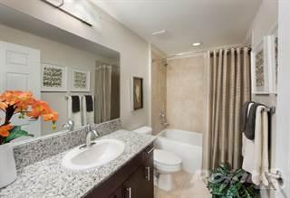 Apartment for rent in Casa Vera - Actonia w/den, Miami, FL, 33196