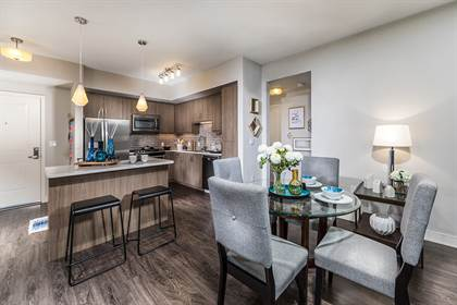 Apartment for rent in 1100 Synergy, Irvine, CA, 92606