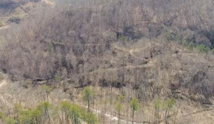 Lots And Land for sale in 00 Will Collins Road, Printer, KY, 41655