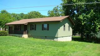 Single Family for sale in 228 Sharp Street, Mountain View, MO, 65548
