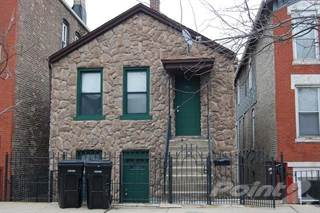 Apartment for rent in 1735 South Desplaines Street Unit 1, Chicago, IL, 60616