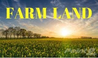 Farm And Agriculture for sale in North side of Bentpath Line, St. Clair, Ontario