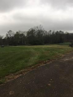 Farm And Agriculture for sale in 107 Elk Drive, Stamping Ground, KY, 40379