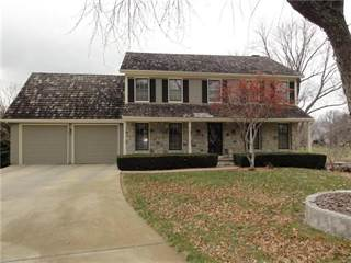 Single Family for sale in 707 N Persimmon View Street, Olathe, KS, 66061