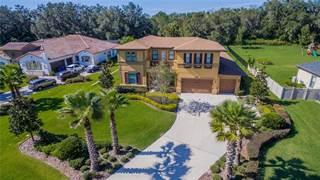 Single Family for sale in 3205 CORDOBA RANCH BOULEVARD, Lutz, FL, 33559
