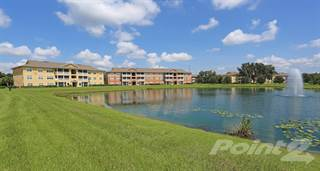 Apartment for rent in The Columns at Cypress Point - 2 Bedroom 1 Bath, Wesley Chapel, FL, 33545