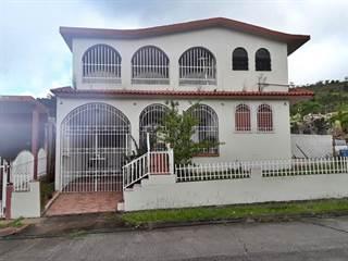 Single Family for sale in E-1 FLAMBOYAN, Cayey, PR, 00736