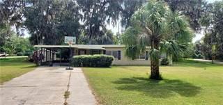 Single Family for sale in 4113 CR 400, Lake Panasoffkee, FL, 33538