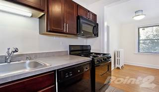 Apartment for rent in Reside at 849 - 1 Bedroom - Large, Chicago, IL, 60613