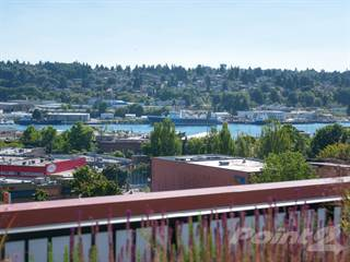 Apartment for rent in The Wilcox, Seattle, WA, 98107