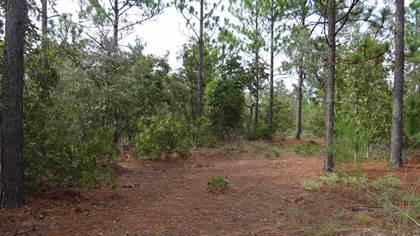Lots And Land for sale in HIGHWAY 240, Buena Vista, GA, 31803