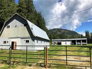 Farm And Agriculture for sale in 394 Old Sicamous Road,, Grindrod, British Columbia