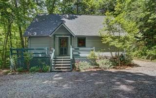 Single Family for sale in 123 RACCOON TRAIL, Morganton, GA, 30560