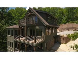 Single Family for sale in 114 N Eastatoe Gap Road, Eastatoe, NC, 28772