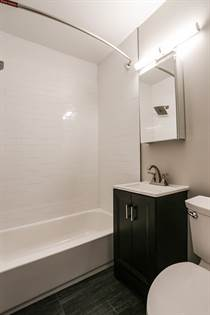Apartment for rent in 1465 Jersey Street, Denver, CO, 80220