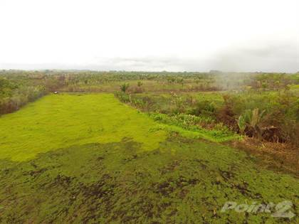 Farm And Agriculture for sale in 57 acres in Southern Belize|Excellent for Cattle Ranching, San Pedro Colombia, Toledo