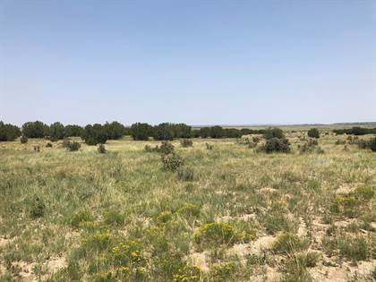 Lots And Land for sale in Lot 9 Long Horn Ranch, Model, CO, 81059