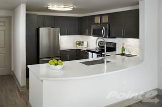 Apartment for rent in Camden Brickell - Soleil, Miami, FL, 33130