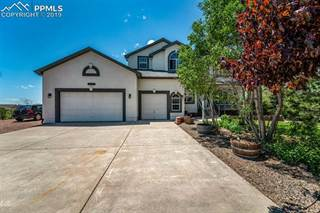 Single Family for sale in 8550 Velvet Antler Way, Black Forest - Peyton CCD, CO, 80831