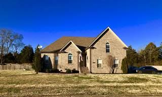 Single Family for sale in 601 Reagan Ln, Mount Juliet, TN, 37122