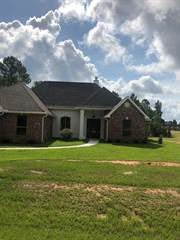 Single Family for sale in 147 Fox Pen, Carriere, MS, 39426